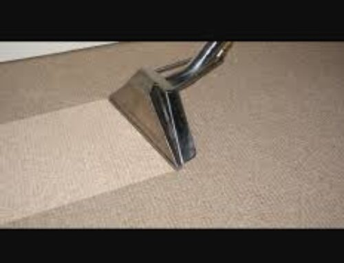 Carpet Cleaning Service in Hounslow